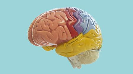 Treatment For Bipolar Disorder Depression Mental Health Uw Medicine