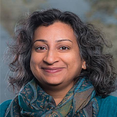 Provider headshot of Deepa Rao Ph.D.