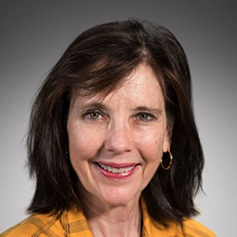 Provider headshot of Sharon  L. Brauns PT